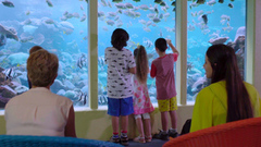One of Perths best attractions is AQWA the aquarium of Western Australia.