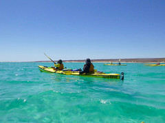 Kayak over the Ningaloo Reef in Exmouth Western Australia