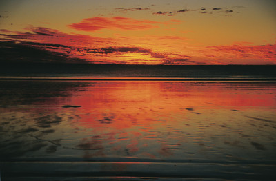 Enjoy a gorgeous sunset in Broome on a hovercraft tour