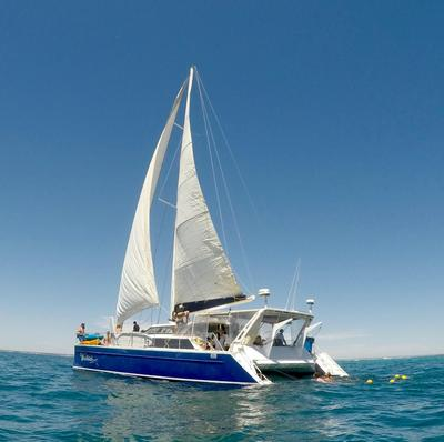 Enjoy a humpback whale tour that departs from Exmouth Western Australia