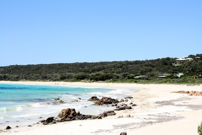 See Australia's south west on a day tour from Perth