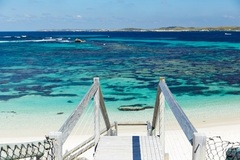 Explore the pristine beaches of Rottnest Island