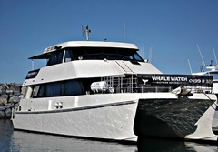 Our vessel is the largest and most luxurious Whale Watching vessel in Western Australia.