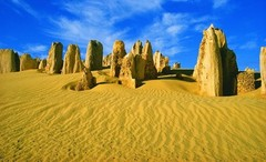 Join the Pinnacles, Kangaroos, Koalas and Cave tour