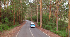 Exploring the Great Southern Region with Busy Blue Bus Tours