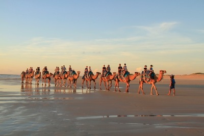 Enjoy Cable Beach at its best on the back of a sunset camel ride with Sightseeing Pass Australia