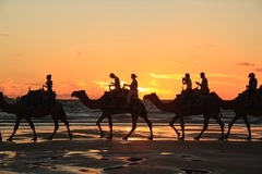 Sunset Camel Ride on Cable Beach can be booked with Sightseeing Pass Australia