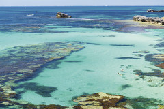 Snorkel, Swim and Dive on Rottnest Island with a Sightseeing Pass Australia pass