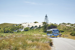 Tour Rottnest Island, Perth with Sightseeing Pass Australia