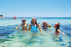 Grab an early ferry to Rottnest Island with Sightseeing Pass Australia