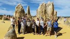 Join a day tour from Perth to explore the Pinnacles and Lancelin