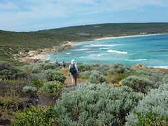 Explore the best of Margaret River with a Cape to Cape Track, Wineries & Caves Tour