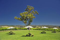 Let Sightseeing Pass South Australia you tour to the Adelaide Hills