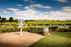 Blend your own wine on this tour at Jacob's Creek. Book with us today