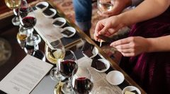Chocolate & Wine Matching Tour