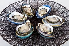 Join this 1 hour Coffin Bay Oyster Tour whilst visiting South Australia.  Book with Sightseeing Pass Australia today.