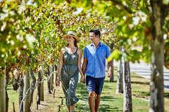 Discover the best of the Swan Valley with one of the best wine tours in Perth