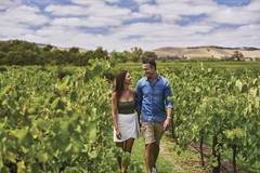 A full day tour exploring the best of the Barossa Valley.  Book with Sightseeing Pass Australia today for the best price!