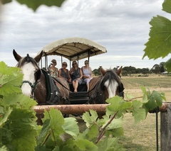 Jump on a 30 minute express horse wagon tour and explore the Swan Valley a different way.  Book with Sightseeing Pass Australia today.