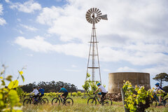 Ride your way between the Margaret River wineries on an electric bike!  Tours can be booked today with Sightseeing Pass Australia
