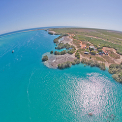 Book a tour at Willie Creek Pearl Farm to discover how Broome Pearls are cultured and valued.  Bookings online with Sightseeing Pass Australia.
