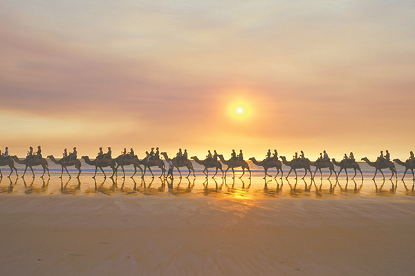 Explore Cable Beach and watch sunset