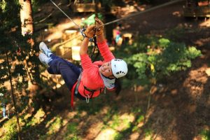 Trees Adventures Abseiling