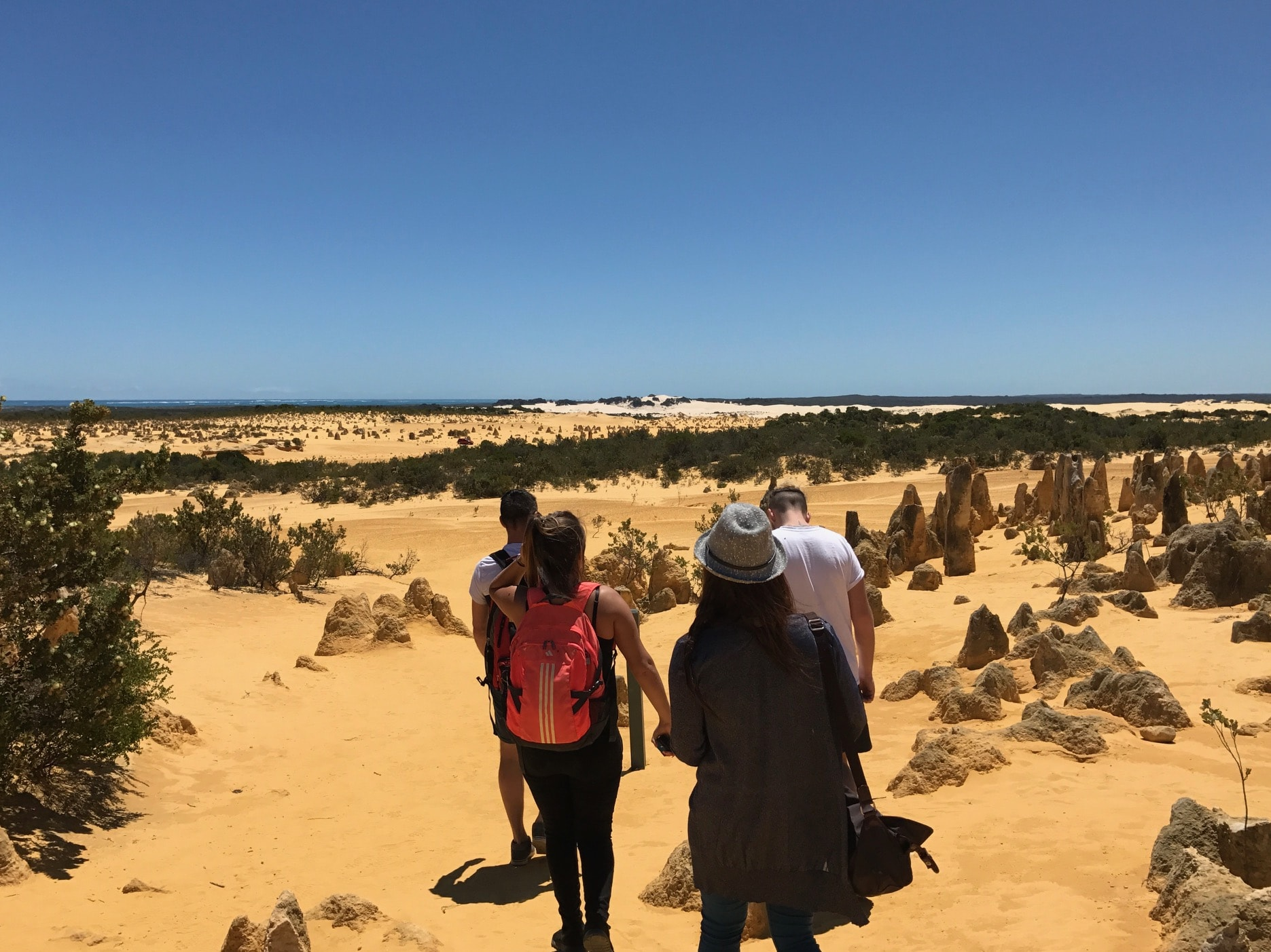 pinnacle day tours from perth