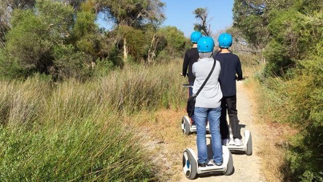 Segway Eco & Wildlife Tour Perth
