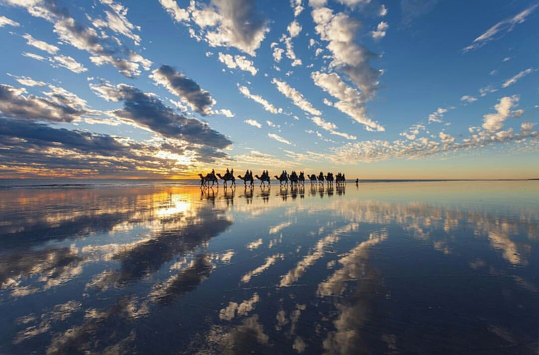 Sunset Camel Ride on the Beach in Broome, Western Australia