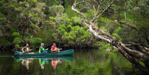 margaret-river-tour-kayaking