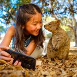 Rottnest Island is one of the Top 10 popular tours