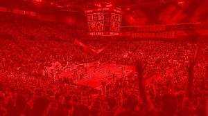 Perth Wildcats Members Save on tours and attractions